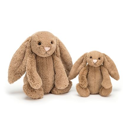 Jellycat soft toy - Bashful Biscuit Bunny - Small