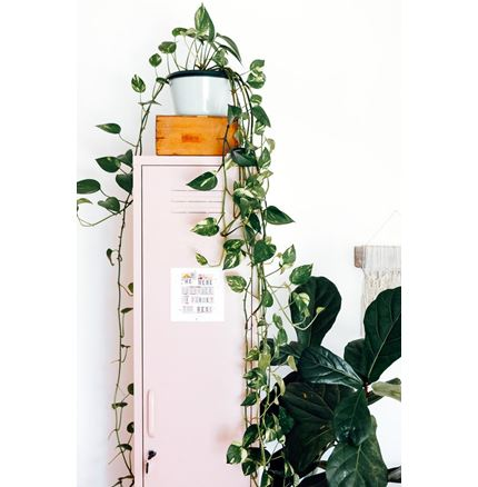Skinny Locker by Mustard Made - Blush Pink