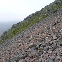 Scree Slopes